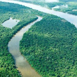 biodiversidade amazonia cesar benjamin 2