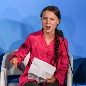 O paroxismo das reações à crise aconteceu com o discurso da jovem Greta Thunberg durante o evento paralelo à Assembleia Geral das Nações Unidas. As reações vieram de todo o espectro político. Portanto, as pautas levantadas pela sueca