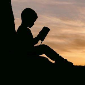 Os desafios da alfabetização se fazem ainda mais dramáticos em uma conjuntura em que a pandemia de Covid-19 gerou a necessária suspensão de aulas e em que a educação a distância ou o ensino remoto emergencial parecem estar distantes da realidade de significativa parcela da educação brasileira.